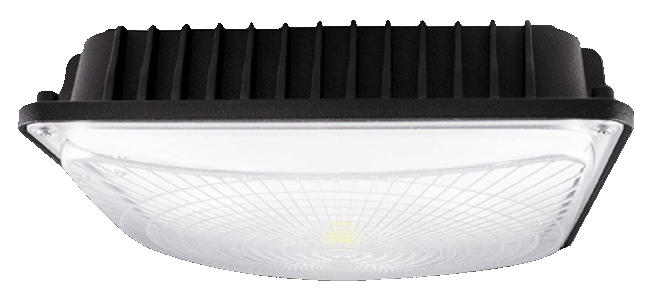 canopy-light-fixture